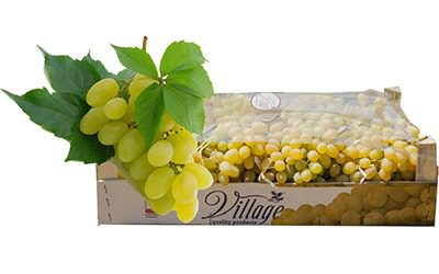 Grapes for sale online