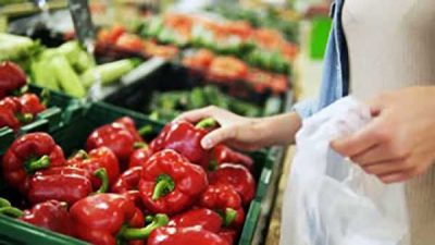 Red bell pepper for sale