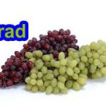 Seedless grape