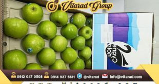 Purchase price of iranian apple