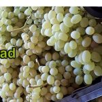 Export of grapes from Iran