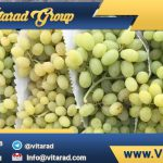 Purchase price of grapes from iran