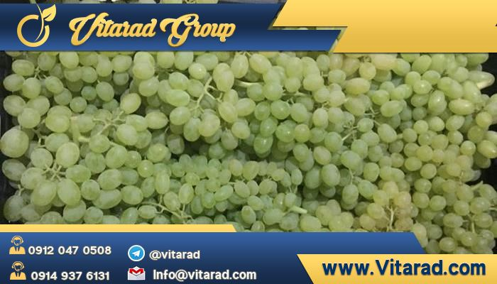 Production of varieties of grapes in Iran