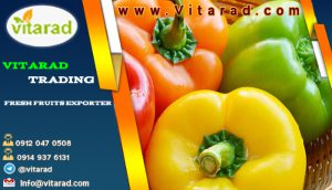 average price of bell peppers